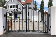 Beautifully designed gates